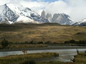 Die Aussicht entschädigt natürlich: Im Hintergrund die berüchtigten Torres del Paine, im Vordergrund ein Stoff-Guanaco am Rio Paine.