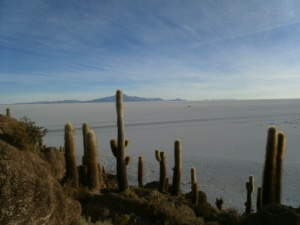 Blick von der Isla Incahuasi auf den Salar de Uyuni.
