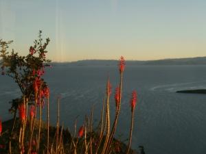 puesta del sol / Sonnenuntergang überm Titicacasee!
