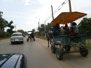Pferdekutschen-Taxitaxi