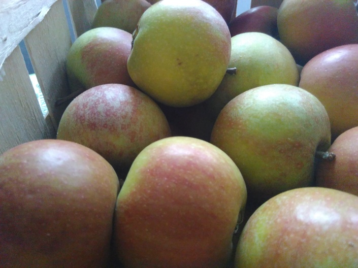 apple-soder