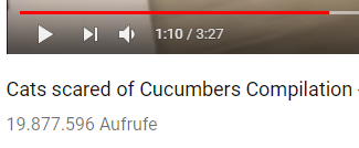 Cats scared of Cucumbers Compilation