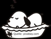 schlafender hund Q